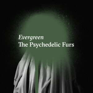 "The Psychedelic Furs reaparece com a inédita ""Evergreen"", ouça"